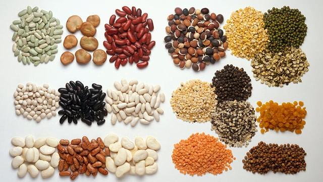 protein-veg